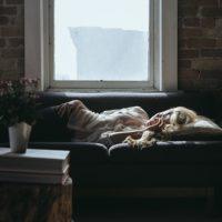 spiaca-monika